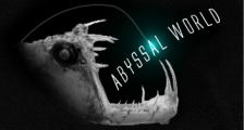 Abyssal World - Deep sea monsters and taxidermy